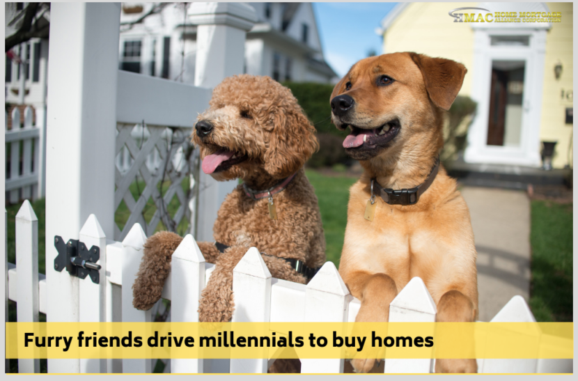 Furry friends drive millennials to buy homes
